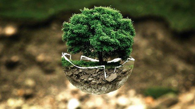 jak chronić środowisko